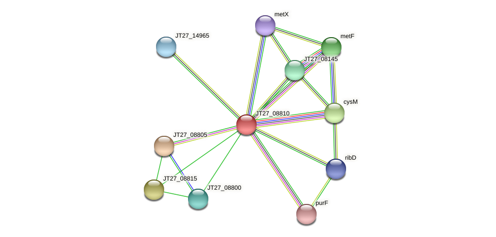 JT27_08810 protein (Alcaligenes faecalis) - STRING interaction network