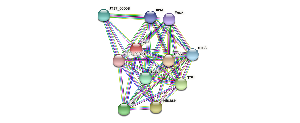 JT27_09000 protein (Alcaligenes faecalis) - STRING interaction network
