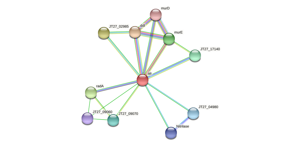 JT27_09075 protein (Alcaligenes faecalis) - STRING interaction network