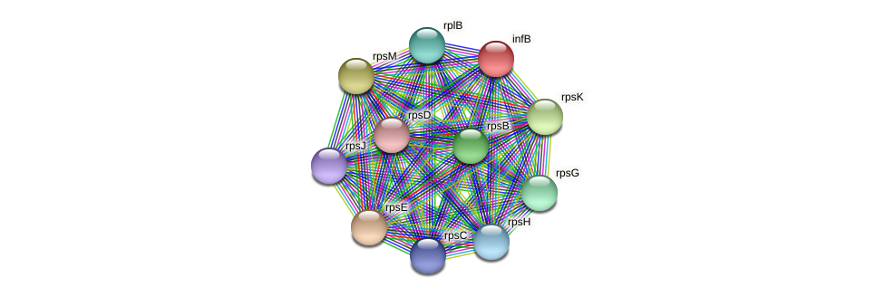 infB protein (Alcaligenes faecalis) - STRING interaction network