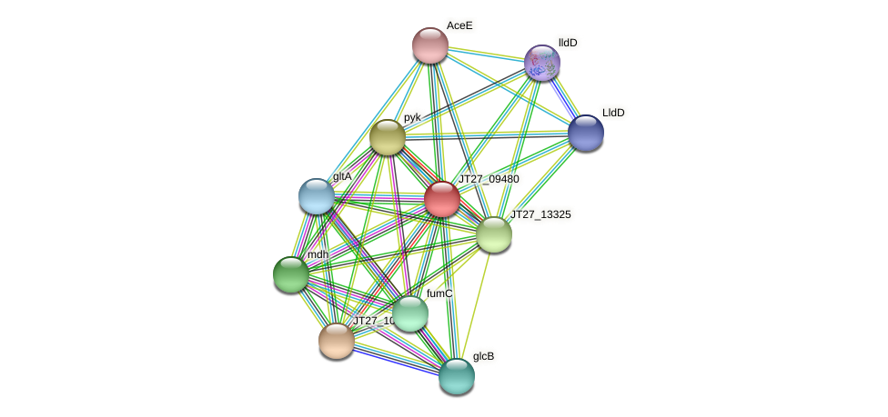 JT27_09480 protein (Alcaligenes faecalis) - STRING interaction network