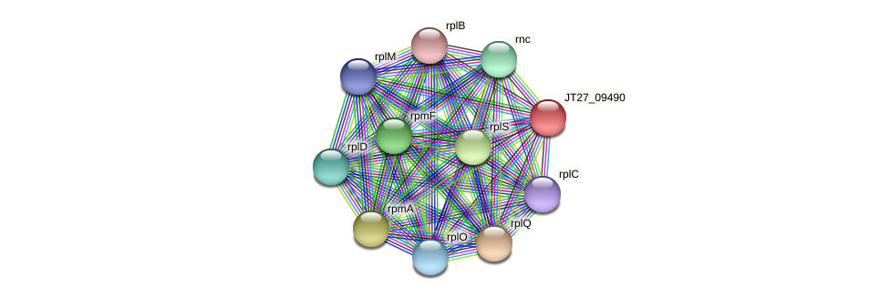 JT27_09490 protein (Alcaligenes faecalis) - STRING interaction network