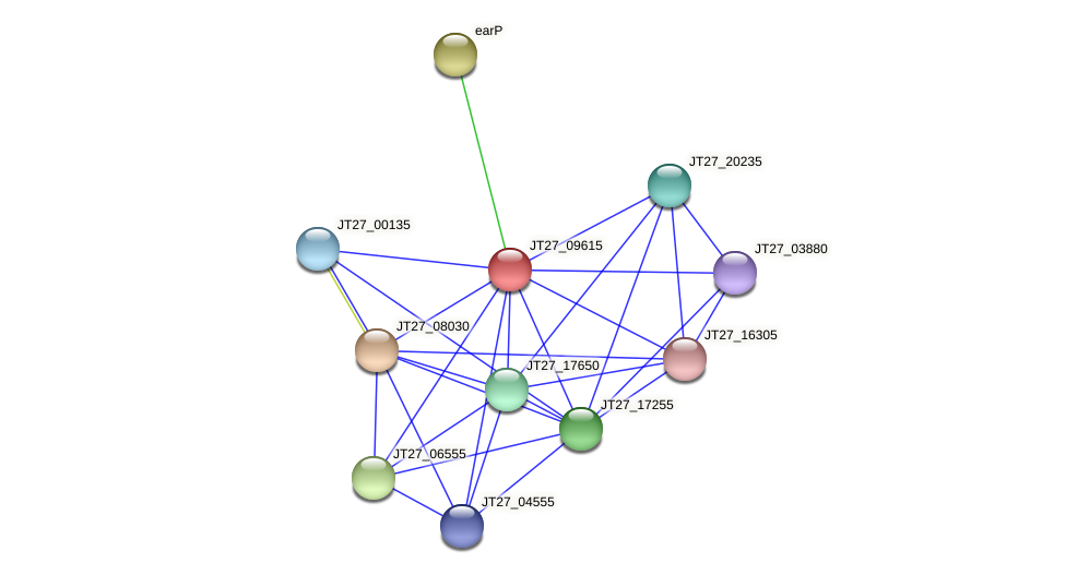 JT27_09615 protein (Alcaligenes faecalis) - STRING interaction network