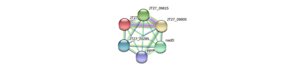AFA_04645 protein (Alcaligenes faecalis) - STRING interaction network