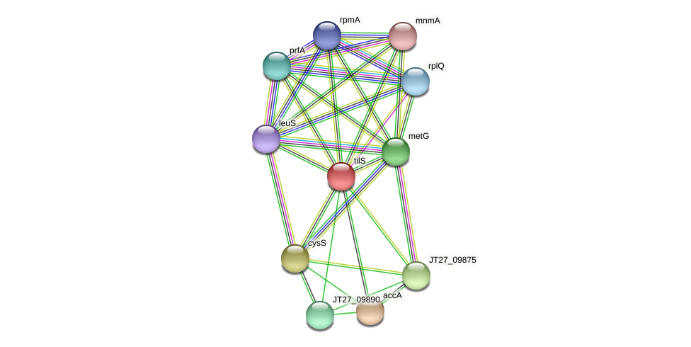 tilS protein (Alcaligenes faecalis) - STRING interaction network