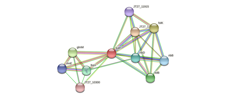 JT27_10310 protein (Alcaligenes faecalis) - STRING interaction network