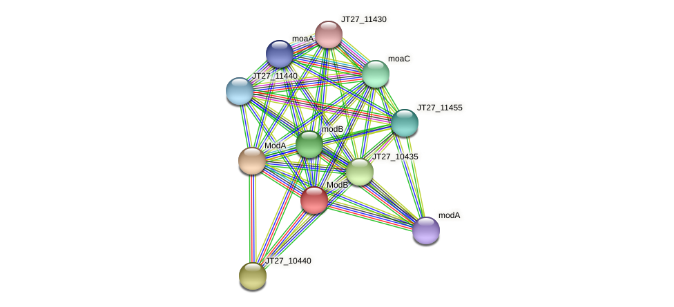 JT27_10445 protein (Alcaligenes faecalis) - STRING interaction network