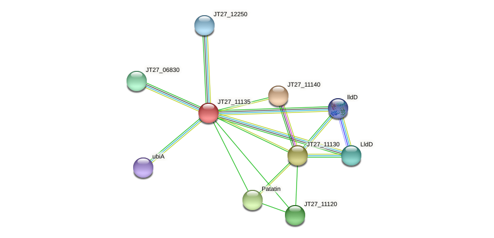 JT27_11135 protein (Alcaligenes faecalis) - STRING interaction network