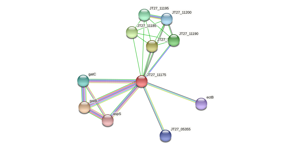 JT27_11175 protein (Alcaligenes faecalis) - STRING interaction network