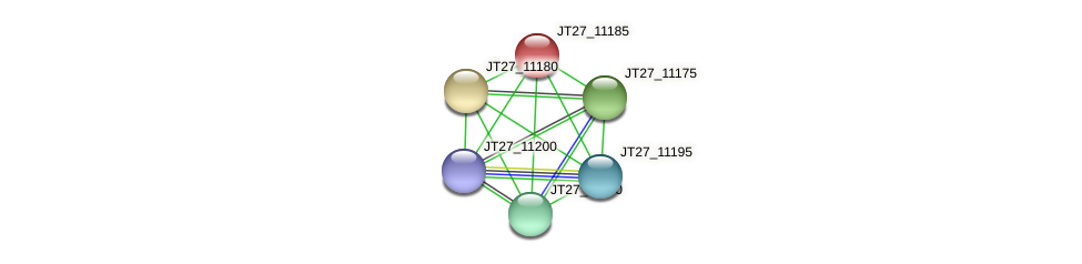 JT27_11185 protein (Alcaligenes faecalis) - STRING interaction network