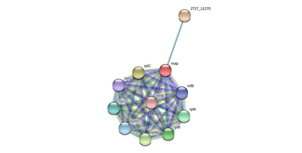 JT27_11265 protein (Alcaligenes faecalis) - STRING interaction network