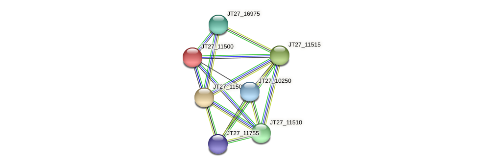 JT27_11500 protein (Alcaligenes faecalis) - STRING interaction network