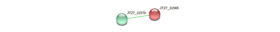 JT27_11565 protein (Alcaligenes faecalis) - STRING interaction network