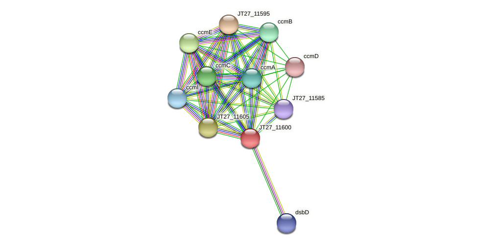 JT27_11600 protein (Alcaligenes faecalis) - STRING interaction network