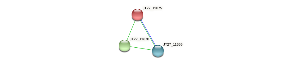 JT27_11675 protein (Alcaligenes faecalis) - STRING interaction network