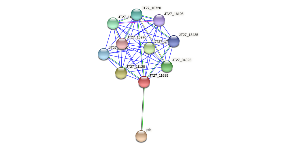 JT27_11685 protein (Alcaligenes faecalis) - STRING interaction network