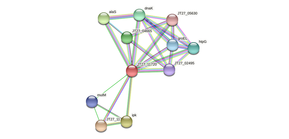 JT27_11720 protein (Alcaligenes faecalis) - STRING interaction network