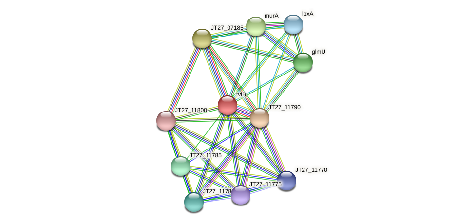 JT27_11795 protein (Alcaligenes faecalis) - STRING interaction network
