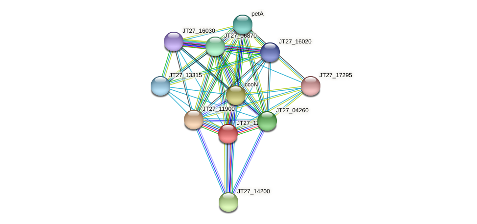 JT27_11895 protein (Alcaligenes faecalis) - STRING interaction network