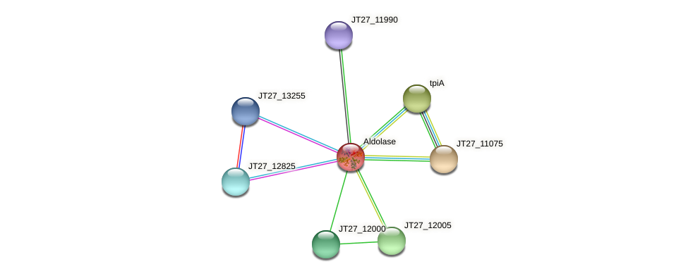 JT27_11995 protein (Alcaligenes faecalis) - STRING interaction network