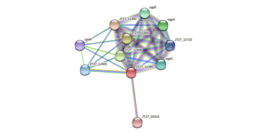 JT27_12395 protein (Alcaligenes faecalis) - STRING interaction network