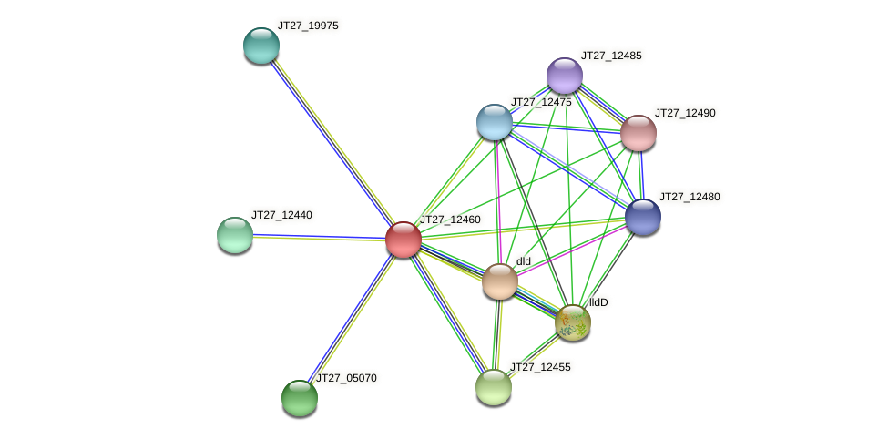 JT27_12460 protein (Alcaligenes faecalis) - STRING interaction network