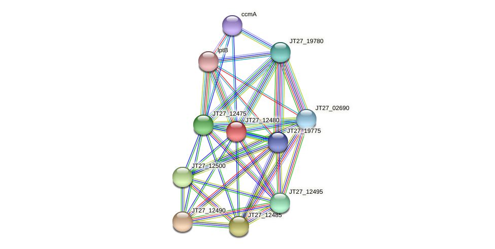 JT27_12480 protein (Alcaligenes faecalis) - STRING interaction network