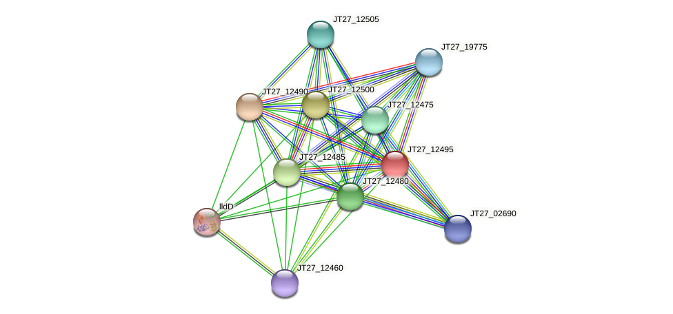 JT27_12495 protein (Alcaligenes faecalis) - STRING interaction network