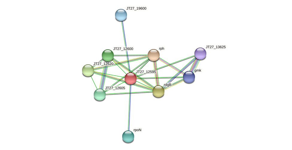 JT27_12595 protein (Alcaligenes faecalis) - STRING interaction network