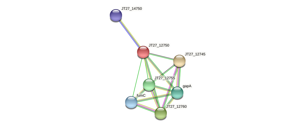 JT27_12750 protein (Alcaligenes faecalis) - STRING interaction network