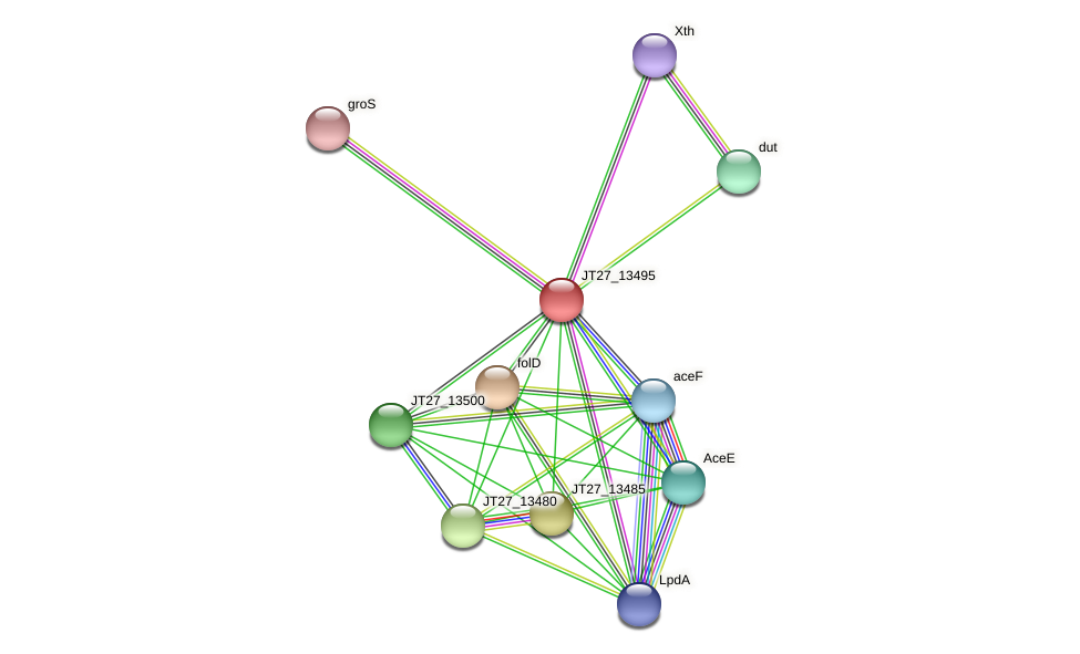 JT27_13495 protein (Alcaligenes faecalis) - STRING interaction network