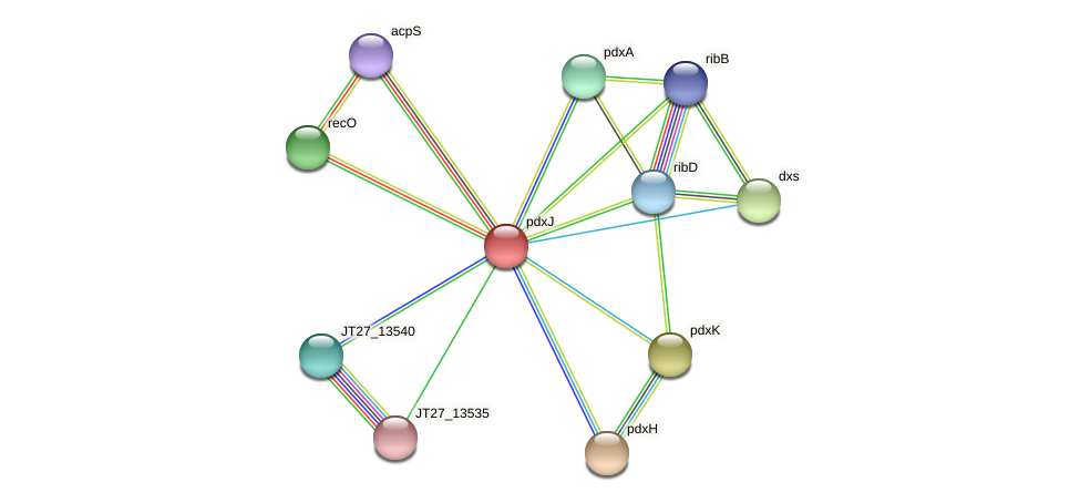 pdxJ protein (Alcaligenes faecalis) - STRING interaction network