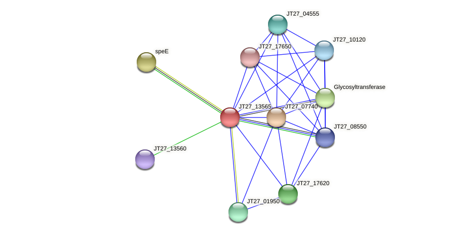 JT27_13565 protein (Alcaligenes faecalis) - STRING interaction network