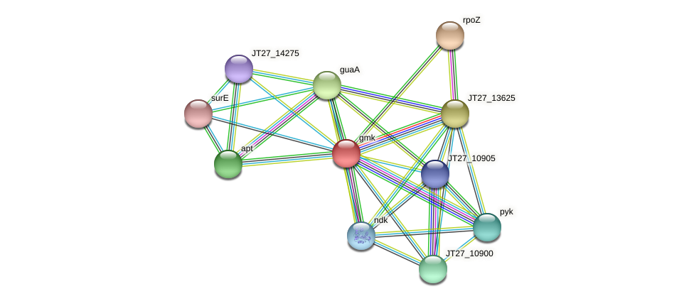gmk protein (Alcaligenes faecalis) - STRING interaction network