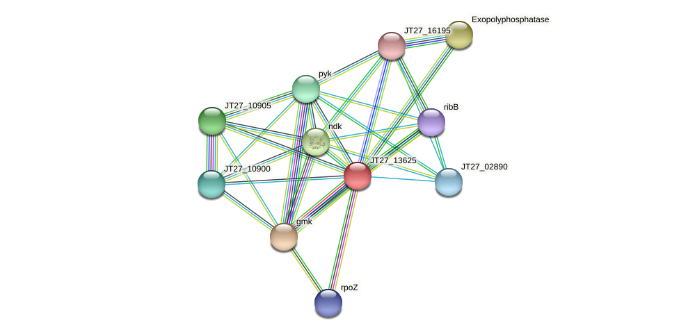 JT27_13625 protein (Alcaligenes faecalis) - STRING interaction network