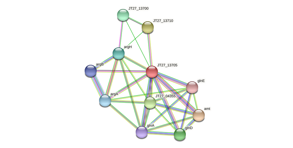 JT27_13705 protein (Alcaligenes faecalis) - STRING interaction network