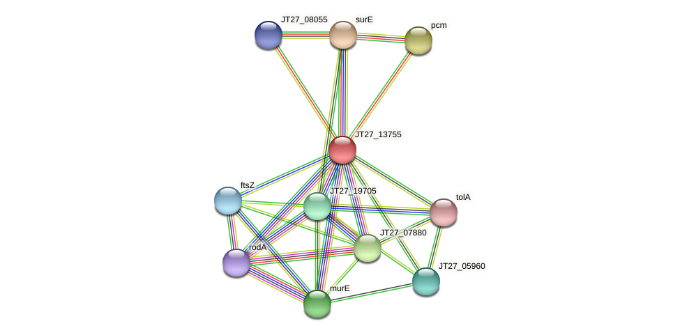 JT27_13755 protein (Alcaligenes faecalis) - STRING interaction network