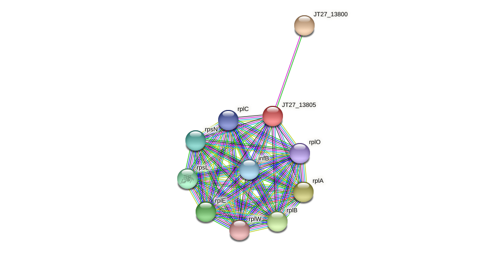 JT27_13805 protein (Alcaligenes faecalis) - STRING interaction network
