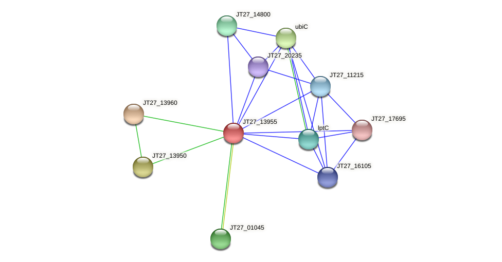 JT27_13955 protein (Alcaligenes faecalis) - STRING interaction network