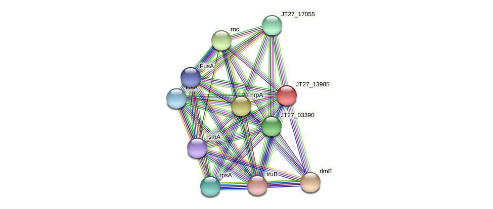 JT27_13985 protein (Alcaligenes faecalis) - STRING interaction network