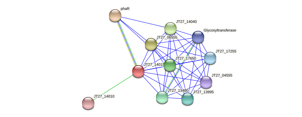 JT27_14015 protein (Alcaligenes faecalis) - STRING interaction network