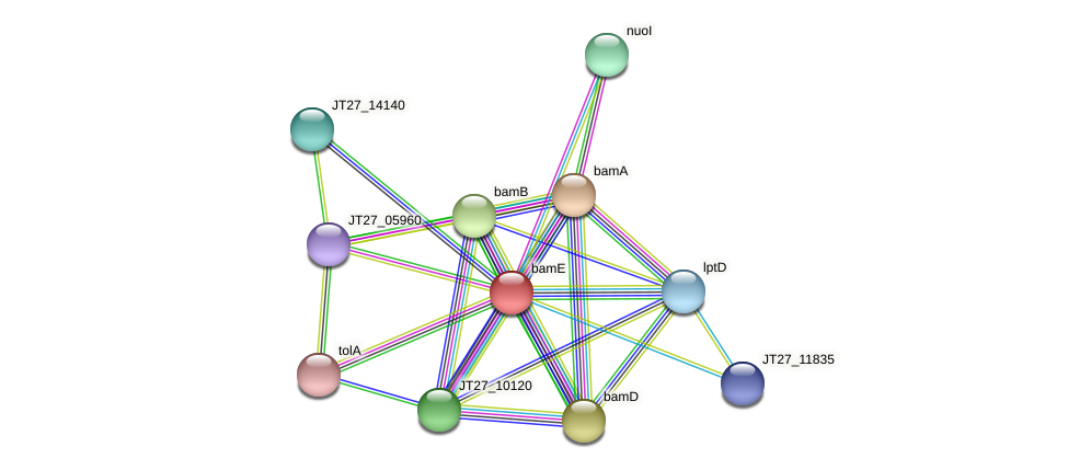 JT27_14145 protein (Alcaligenes faecalis) - STRING interaction network