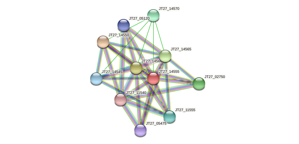 JT27_14555 protein (Alcaligenes faecalis) - STRING interaction network