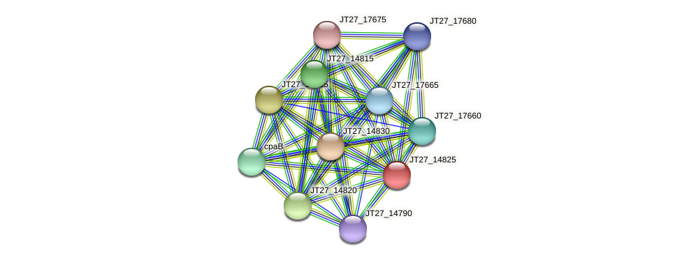 JT27_14825 protein (Alcaligenes faecalis) - STRING interaction network