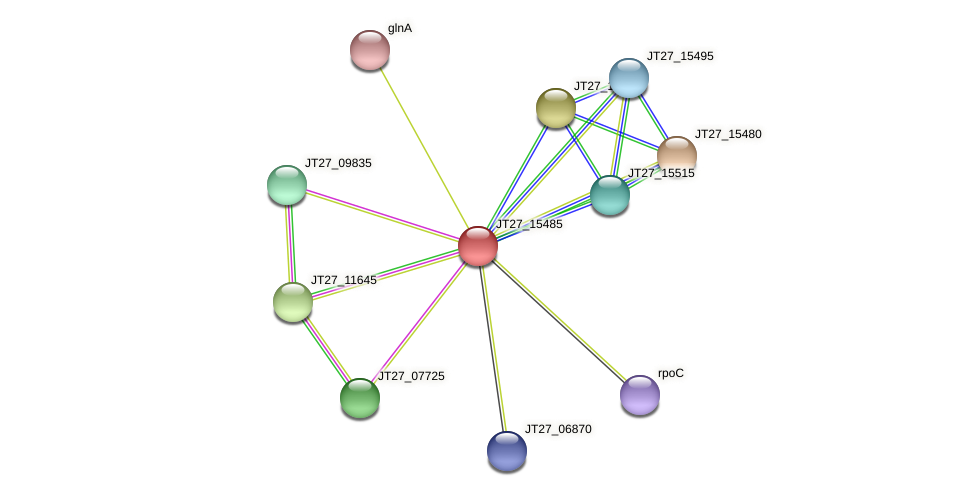 JT27_15485 protein (Alcaligenes faecalis) - STRING interaction network