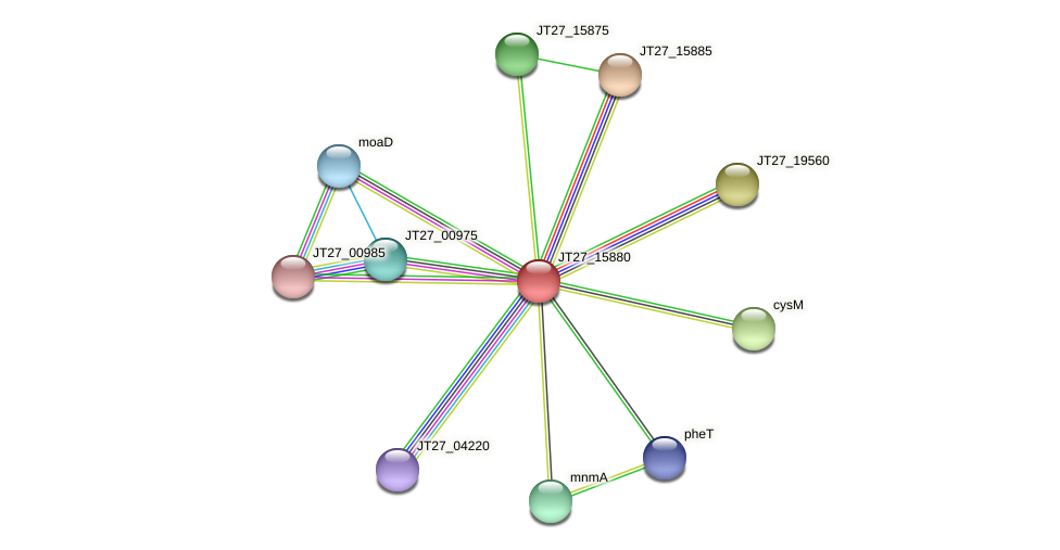 JT27_15880 protein (Alcaligenes faecalis) - STRING interaction network