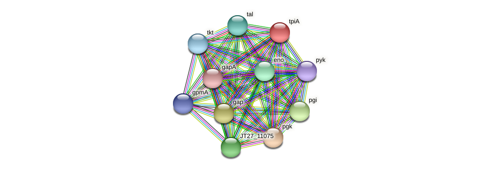 tpiA protein (Alcaligenes faecalis) - STRING interaction network