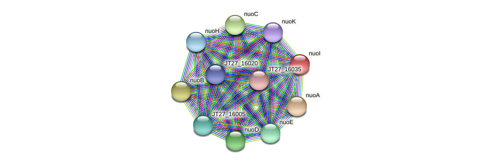 nuoI protein (Alcaligenes faecalis) - STRING interaction network