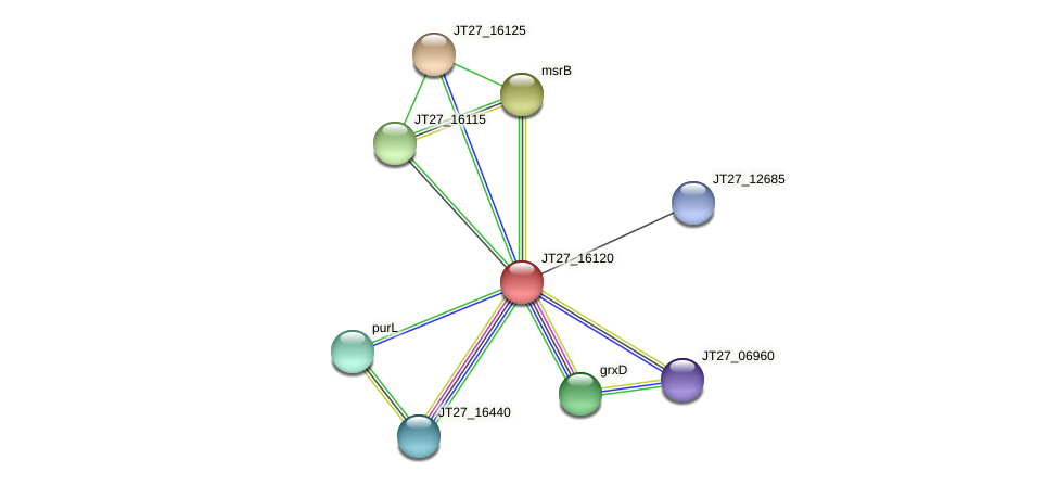JT27_16120 protein (Alcaligenes faecalis) - STRING interaction network