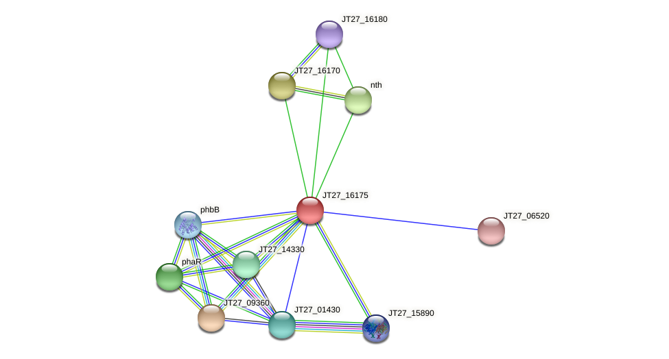 JT27_16175 protein (Alcaligenes faecalis) - STRING interaction network